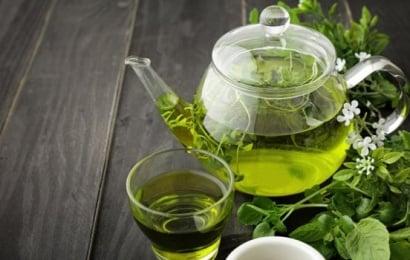 Yaşıl çay sümüklər üçün çox faydalıdır