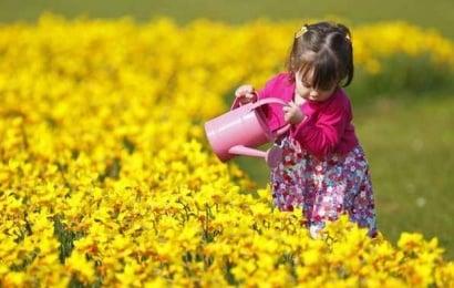 Mart ayında yaz havası olacaq – PROQNOZ