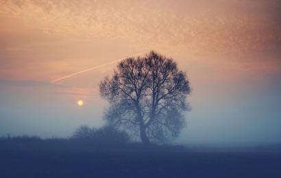 Sabah yağmursuz hava gözlənilir – PROQNOZ