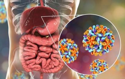 Hepatit B nədir, necə yoluxur?