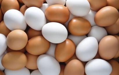 Yumurtanın daha bir faydası AÇIQLANDI