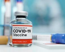Peyvənd üçün istifadə edilən vaksinlər: hər birinin öz xüsusiyyəti
